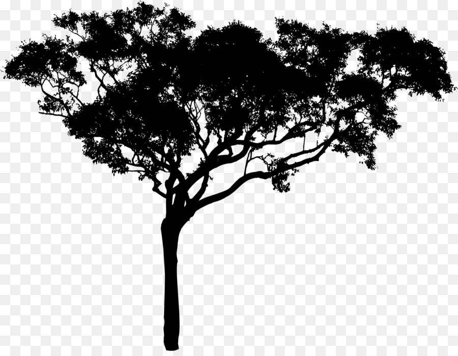 Tree Branch Silhouette clipart.