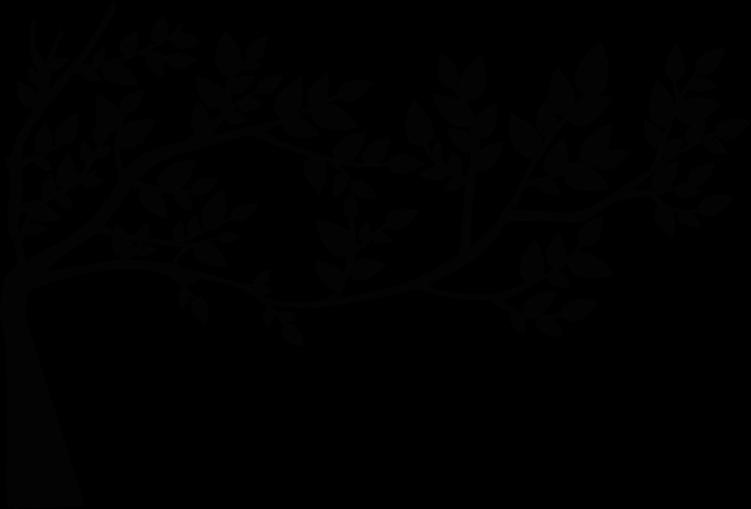 Tree Leaf Drawing Clip art.