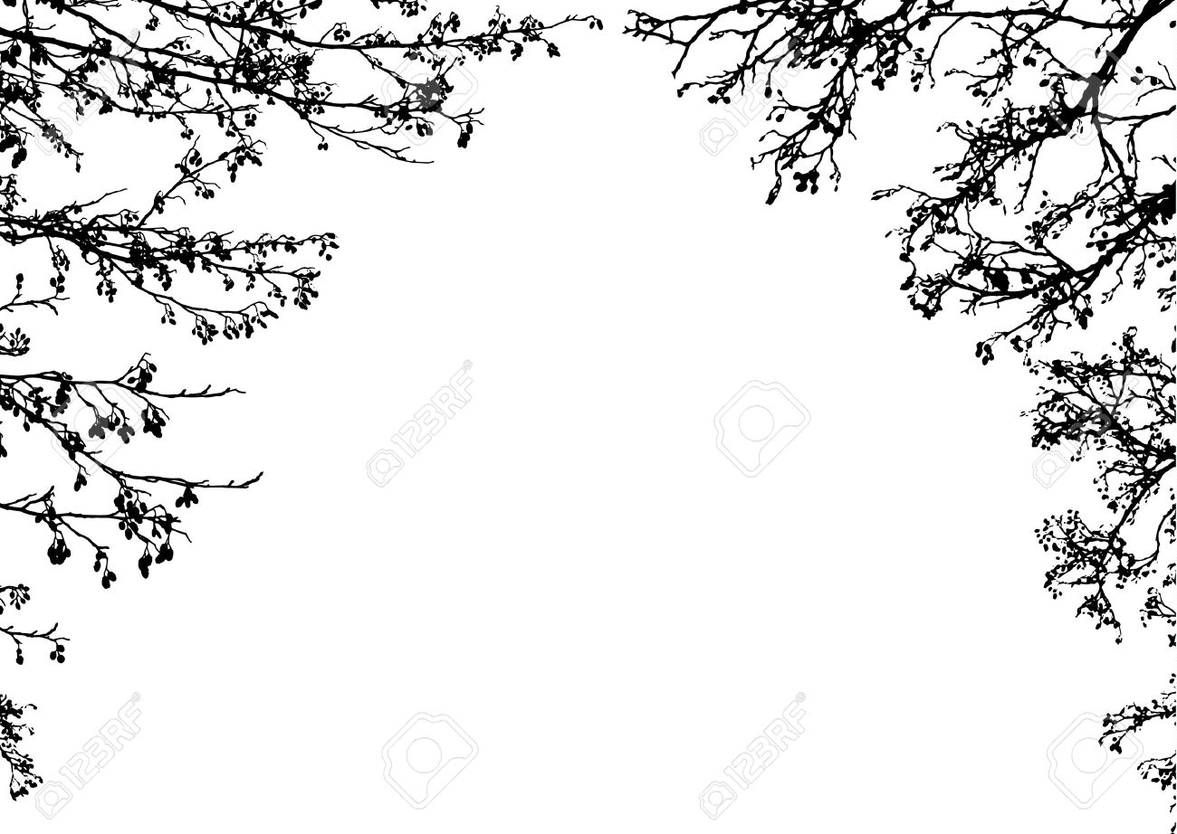 Black silhouettes of tree branches. Clip art frame.