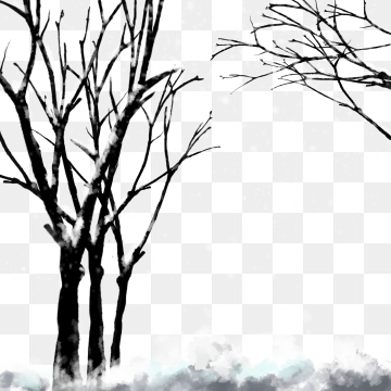 Snow Covered Branch PNG Images.