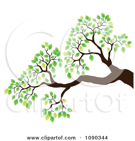 Branches Without Leaves Clipart Clipground