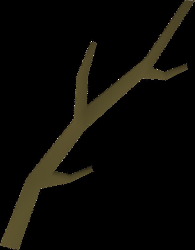 Long Tree Branch.