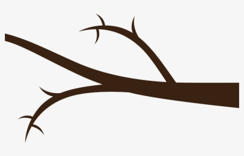 Free Tree Branches Clip Art with No Background.