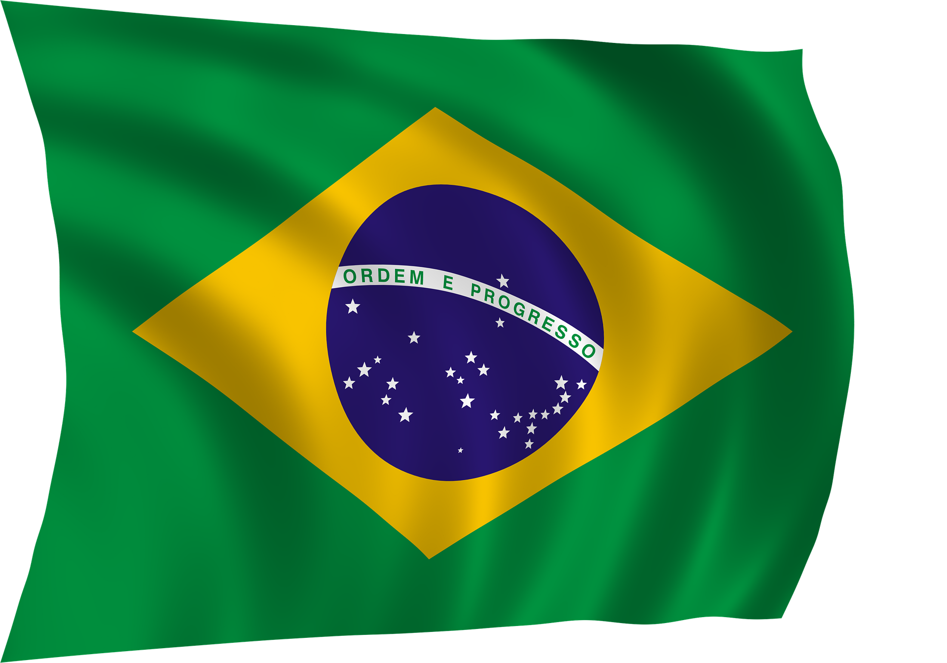 As Flores E As Cores da Bandeira do Brasil.