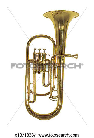 Picture of a brass tuba x13718337.