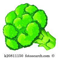 Brassica Clipart and Illustration. 96 brassica clip art vector EPS.