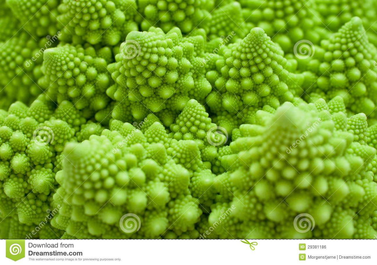 Cabbage Romanesco, Brassica Oleracea Stock Image.