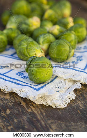 Stock Photography of Brussels sprouts (Brassica oleracea var.