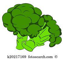 Brassica oleracea Clipart Vector Graphics. 15 brassica oleracea.