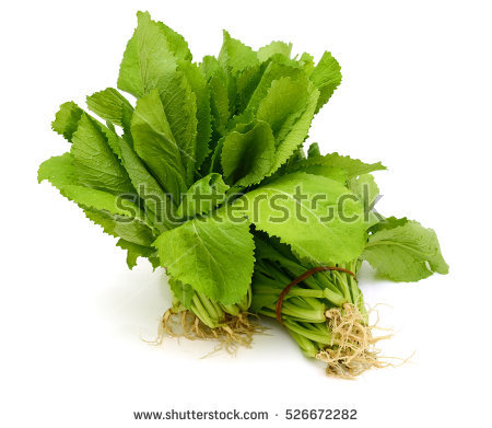 Brassicaceae Stock Photos, Royalty.