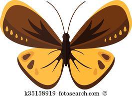 Pieris brassicae Clip Art Royalty Free. 25 pieris brassicae.