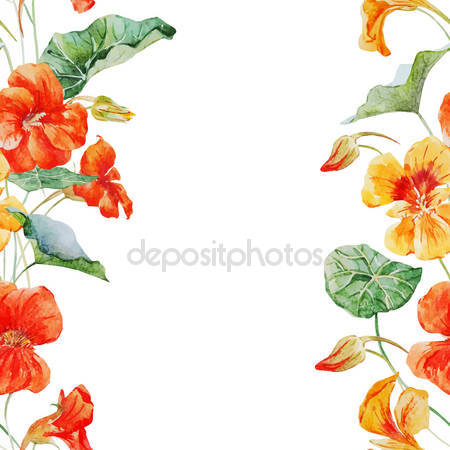 Capucine Stock Vectors, Royalty Free Capucine Illustrations.
