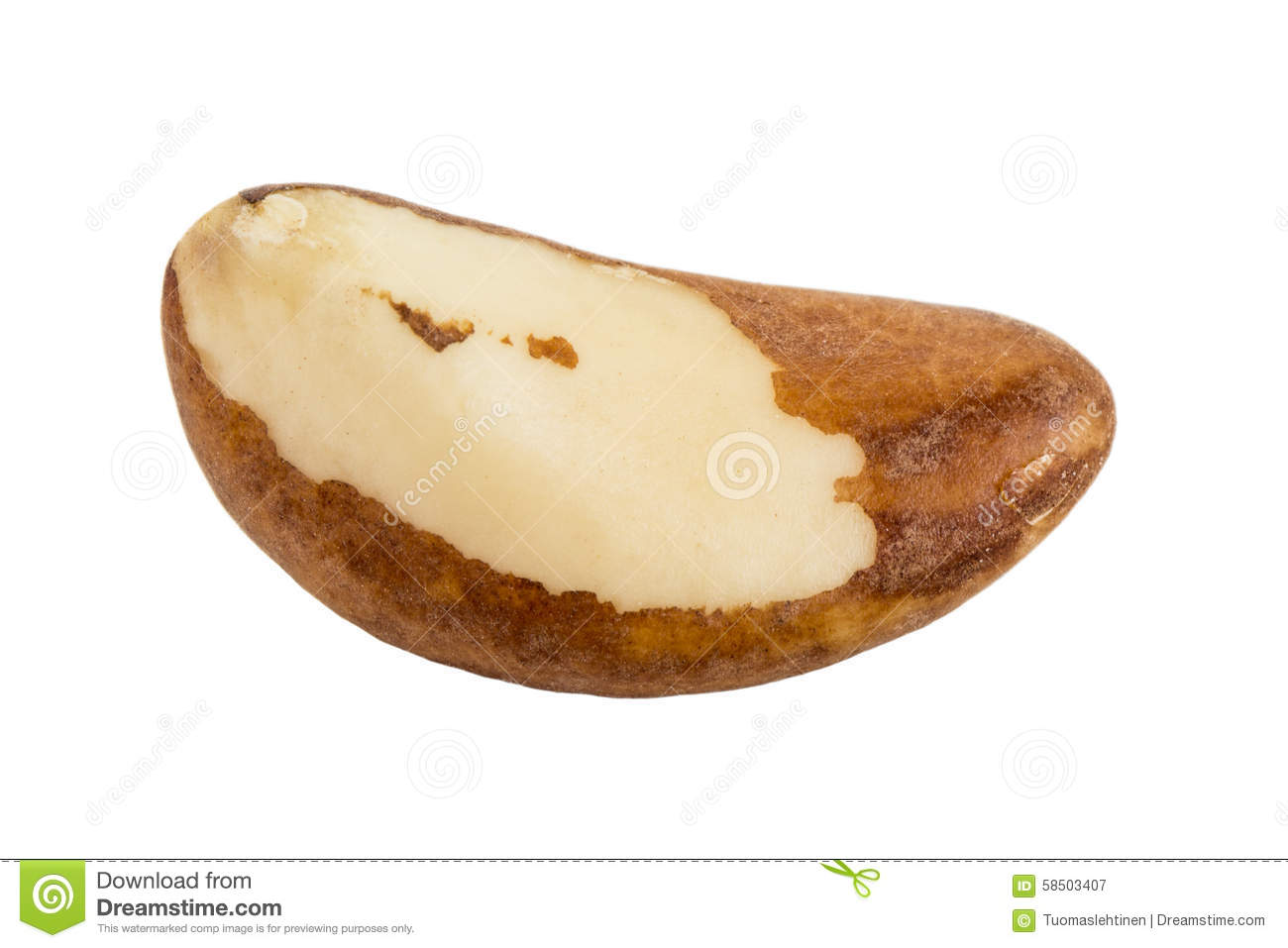 One Brazil Nut Stock Photos, Images, & Pictures.