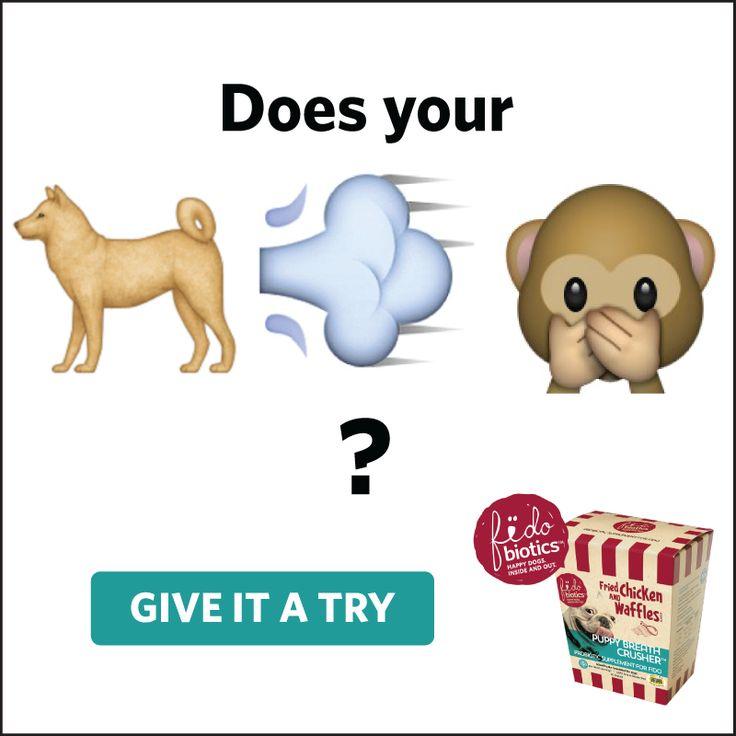 1000+ ideas about Dog Breath Remedies on Pinterest.