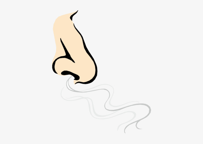 Nose Breath, Nose, Expiration, Float PNG and Vector with Transparent.