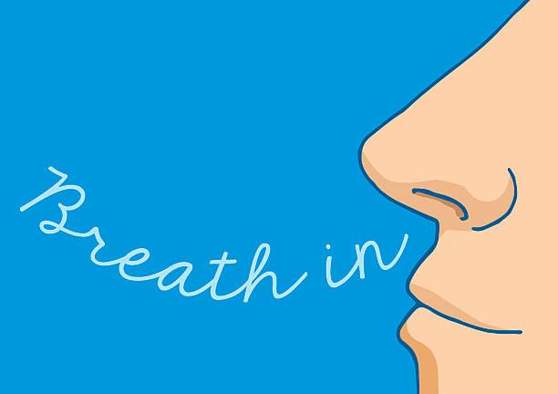 Best Breathing Illustrations, Royalty.