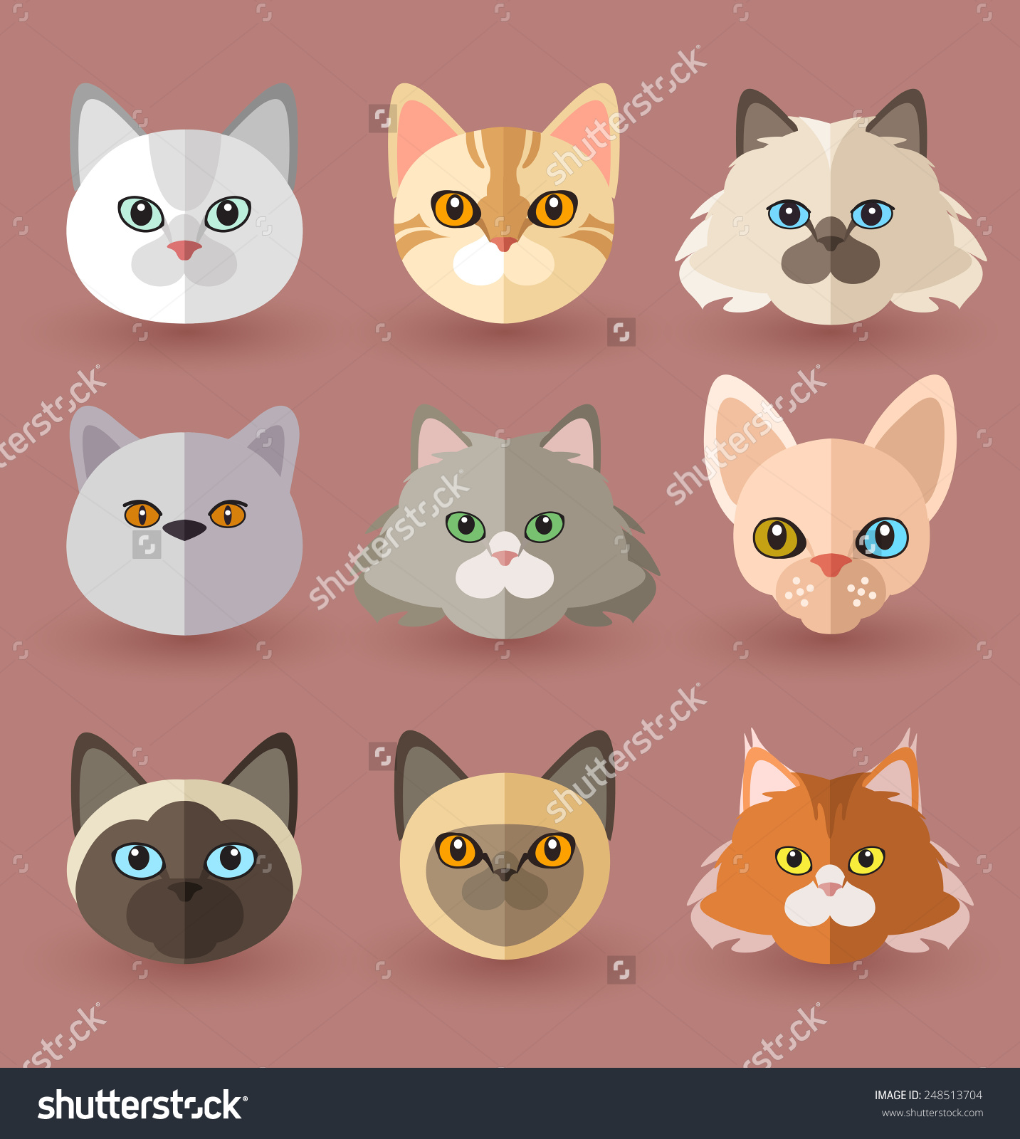 Cat Breeds Stock Vector 248513704.