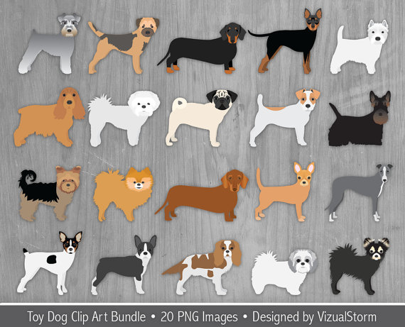 Toy Dog Clip Art Bundle 20 Small Dog Breeds Pet by VizualStorm.