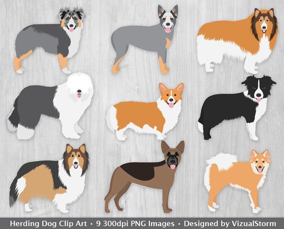 Herding Dogs Clipart Digital Dog Clip Art Herding by VizualStorm.