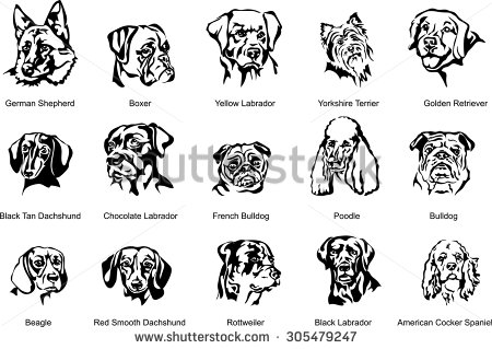 Dog breed black and white clipart.