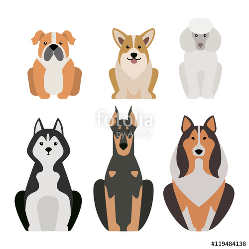 Vector illustration of different dogs breed isolated on white.