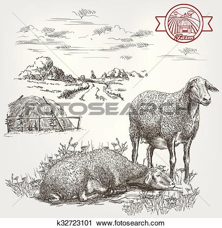 Clipart of sheep breeding sketch k32723101.