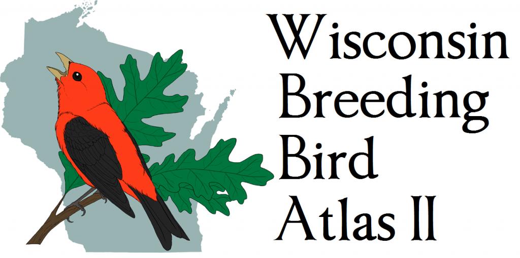 Announcing the Wisconsin Breeding Bird Atlas II eBird Portal!.