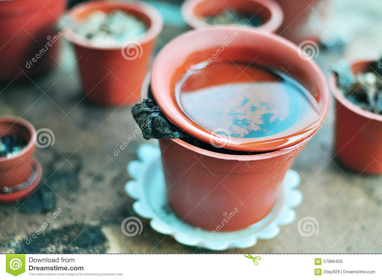 Stagnant Water In Unused Pots Stock Photo.