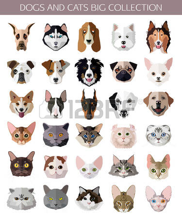 22,825 Breeds Stock Vector Illustration And Royalty Free Breeds.