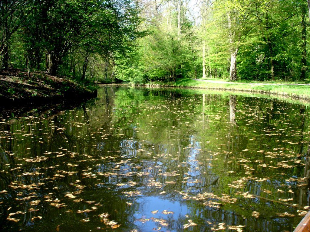 """Bild """"Bürgerpark Bremen"""" zu Bürgerpark und Stadtwald in Bremen."""