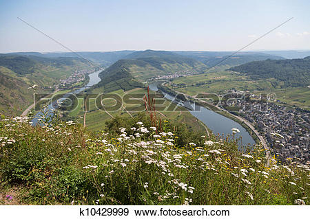 Stock Photograph of Bend of the Moselle rover near Bremm, Germany.