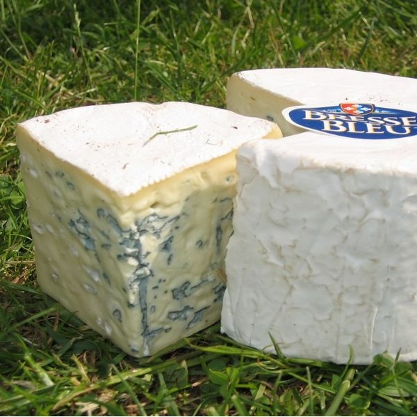 1000+ images about Blue Cheese on Pinterest.