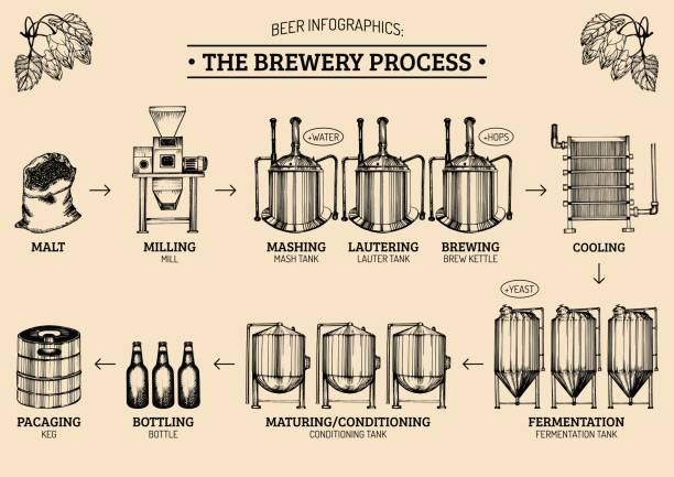 Best Brewery Illustrations, Royalty.
