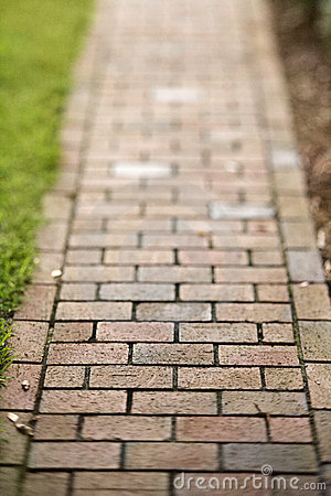 Showing post & media for Cartoon brick walkway.