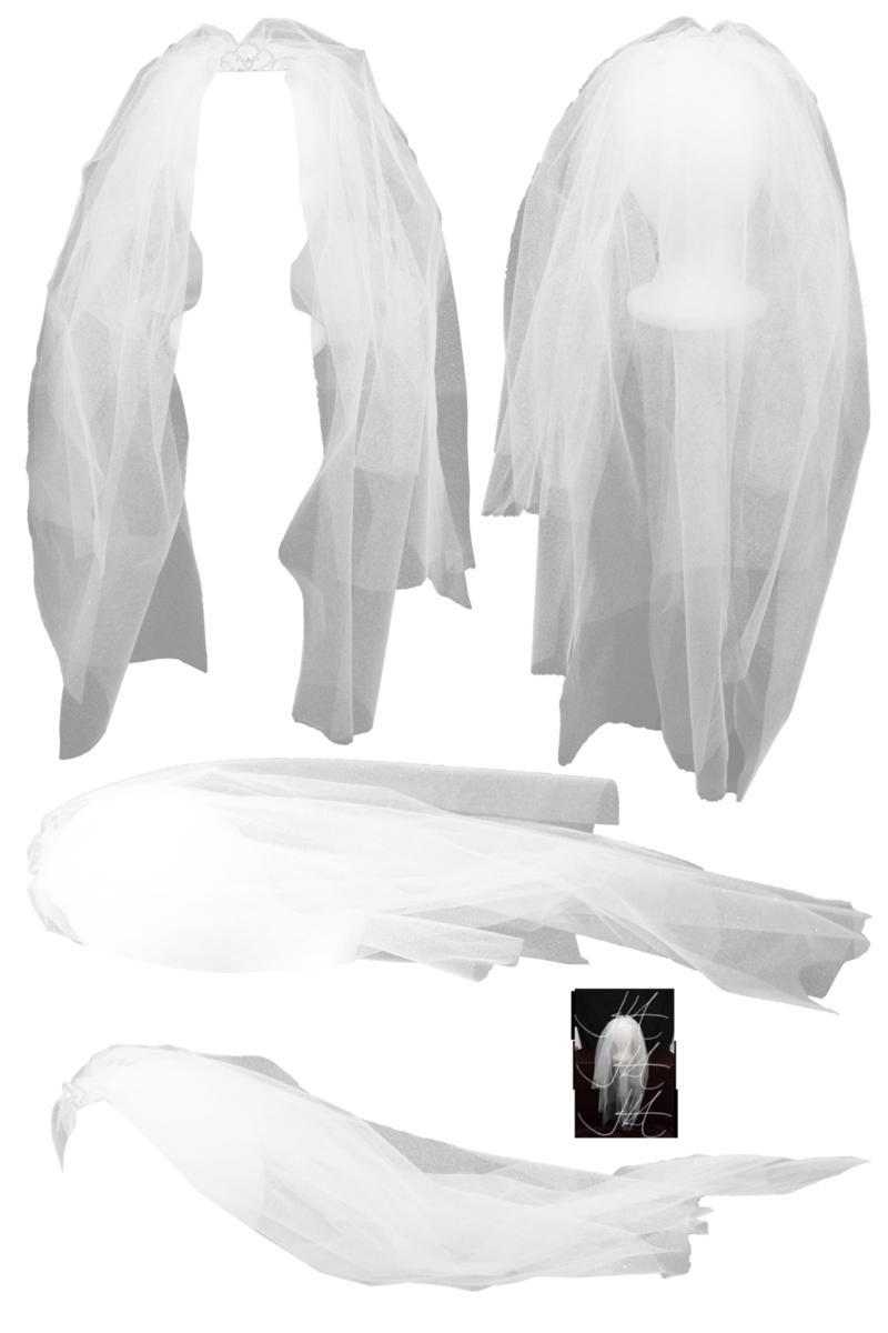 Download Free png . PlusPng.com Bridal Veil png.