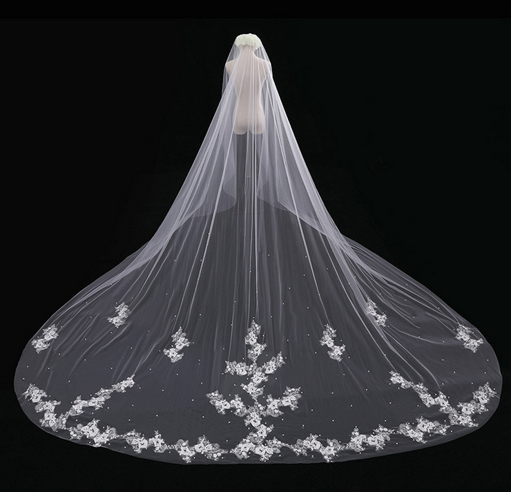Veil,Bridal veil,Bridal accessory,Fashion accessory,Dress,Bride.