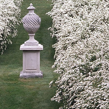 1000+ images about White Gardens on Pinterest.