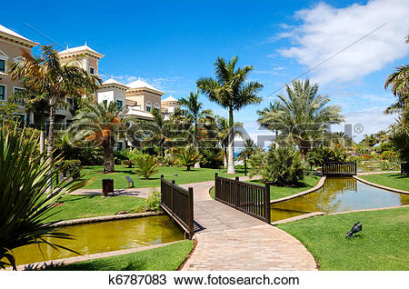 Stock Photo of Recreation area of luxury hotel, palm trees and.