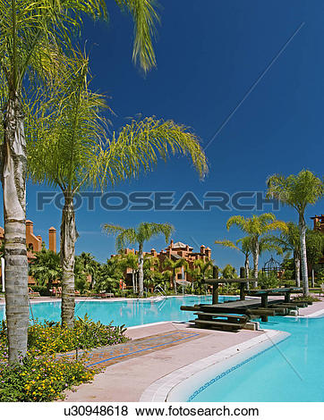 Pictures of Palm trees and wooden bridge over turquoise.