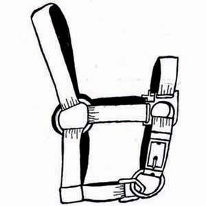 Horse Bridle Clipart.