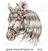 Royalty Free Bridle Stock Horse Designs.