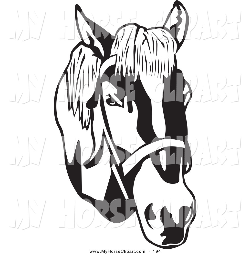 Clip Art of a Black and White Bridled Horse Head on WhiteBlack and.