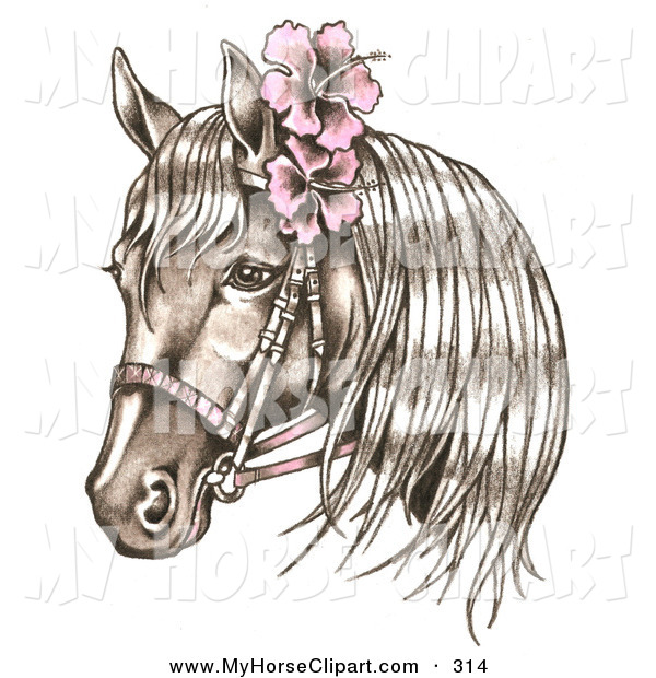 Clip Art of a Bridled Brown Horse Wearing Pink Hibiscus Flowers in.