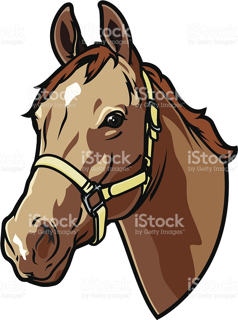 A Graphic Of A Bridled Horse Head stock vector art 165080893.