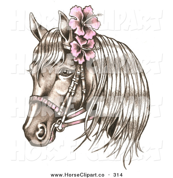Clip Art of a Brown Bridled Horse Wearing Pink Hibiscus Flowers in.
