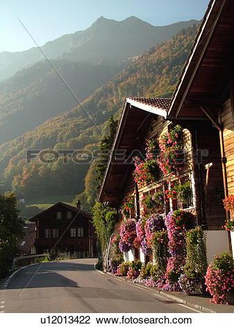 Stock Photo of Switzerland, Europe, Bern, Berne, Brienz, Berner.