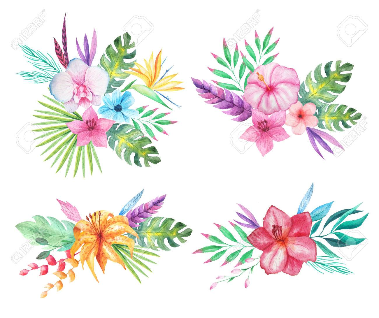 Set of Watercolor hand painted tropical flowers, leaves and plants.