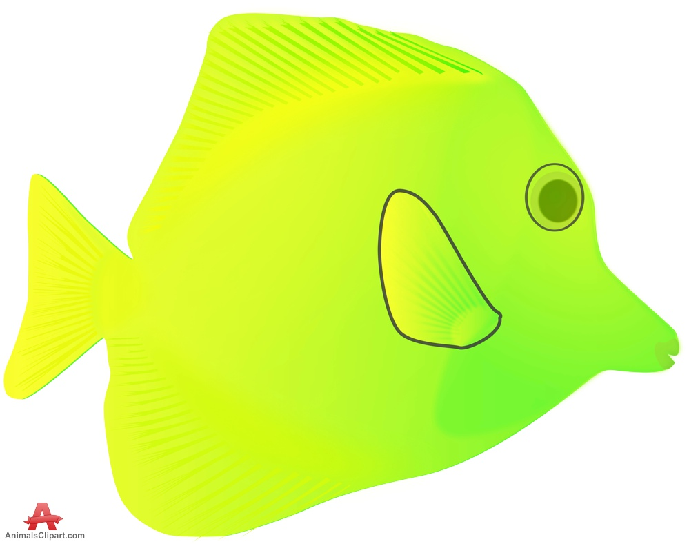 Exotic Bright Yellow and Green Fish.