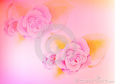 Bright Pink Peony Flower Yellow Centre Stock Illustrations.