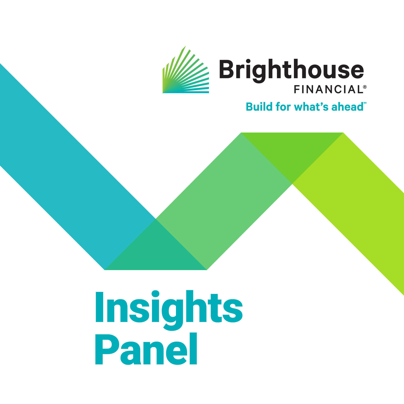 The Brighthouse Financial Insights Panel.